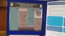 8è Congres Mundial de Promoció de la Salut Mental i Prevenció dels Trastorns Mentals